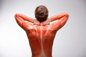Neck Pain Treatment - Boardman and Youngstown Chiropractors