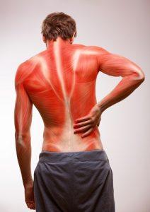 low backpain relief